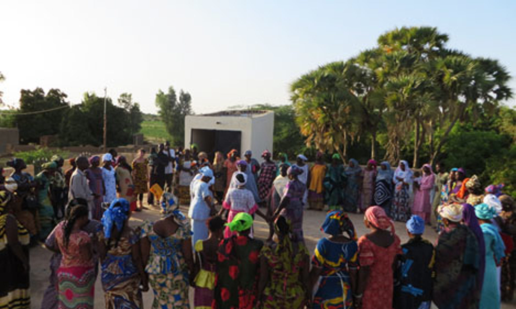 REDES : Network for Ecovillage Emergence and Development in the Sahel